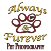 Always and Furever Pet Photography